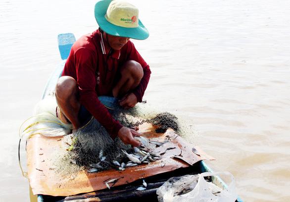Người Việt giỏi nghề cá - Ảnh 1.