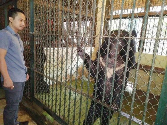 Hạn chế nuôi thú hoang dã làm trò: Khó dẹp được xiếc thú - Ảnh 3.