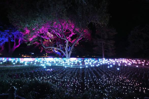 Rực rỡ đêm Sydney trong lễ hội ánh sáng - Ảnh 10.