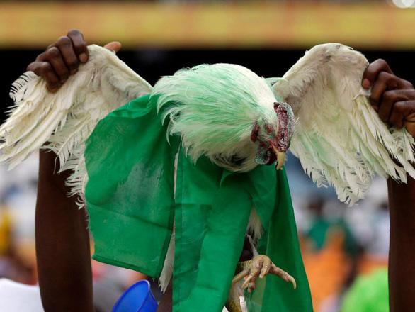 Cổ động viên Nigeria bị cấm mang gà vào sân vận động World Cup 2018 - Ảnh 1.
