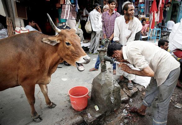 Ấn Độ khủng hoảng nước, hàng trăm triệu người điêu đứng - Ảnh 1.