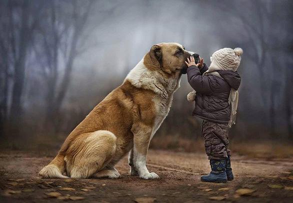 Giải mã ngôn ngữ cử chỉ những chú chó cưng - Ảnh 1.