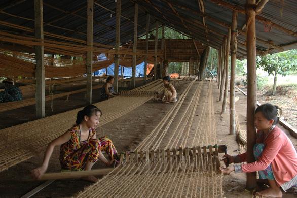 Dừa 101 công dụng - Ảnh 1.