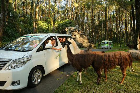 8 vườn thú tuyệt vời ở Đông Nam Á - Ảnh 7.