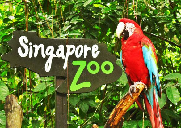 8 vườn thú tuyệt vời ở Đông Nam Á - Ảnh 2.