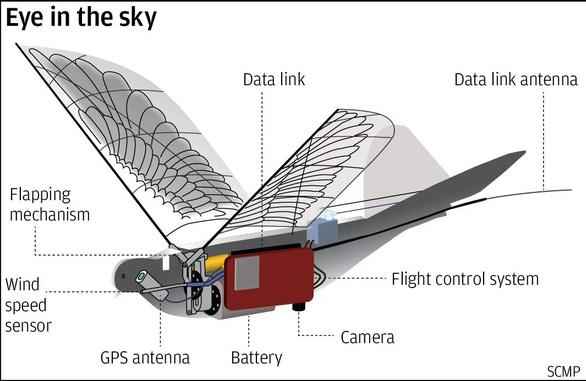 Trung Quốc giám sát người dân bằng drone robot hình chim - Ảnh 1.