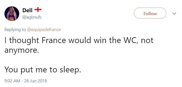 Cổ động viên đòi lại tiền vé trận Pháp - Đan Mạch - Ảnh 3.