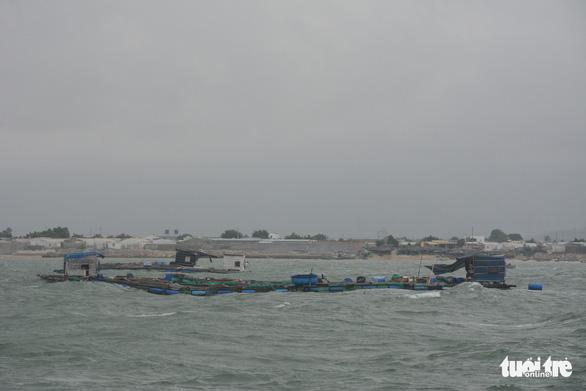 Cá nuôi gần nhiệt điện Vĩnh Tân chết hàng loạt, nguyên nhân vẫn là dấu hỏi - Ảnh 1.