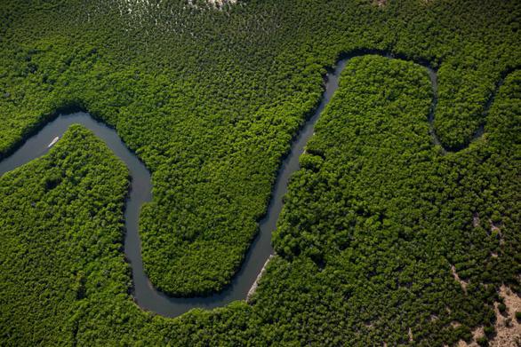 Quần đảo Tiwi - thiên đường thơ mộng níu chân du khách - Ảnh 3.