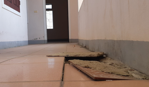 Trụ sở xã, trường học xây 33 tỉ bỏ hoang cho... bò trú nắng - Ảnh 6.