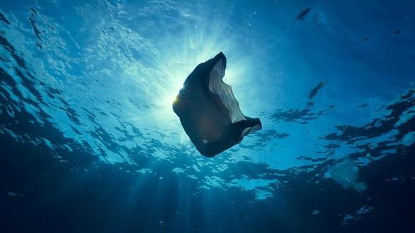 Vì sao động vật biển không thể ngừng ăn rác nhựa? - Ảnh 3.