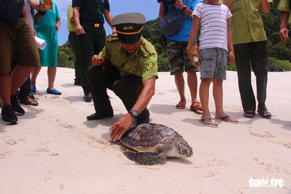 Thả rùa quý hiếm nặng hơn 20kg về biển - Ảnh 1.