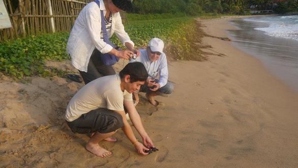 Đi Sri Lanka, Indonesia học bảo tồn rùa biển - Ảnh 3.