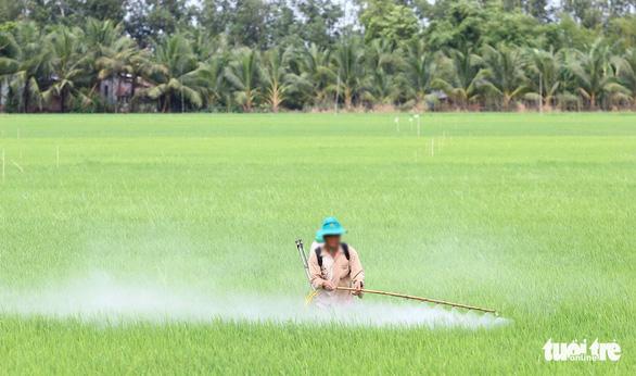 Cả trăm ngàn tấn thuốc bảo vệ thực vật đổ xuống ruộng đồng mỗi năm - Ảnh 1.