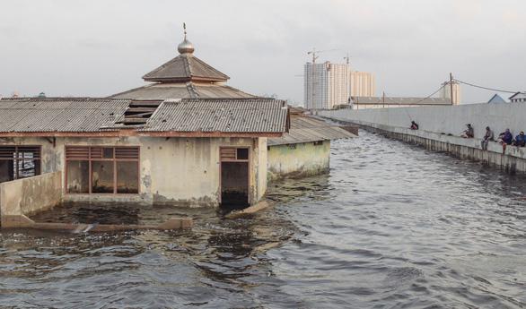 30 năm nữa Jakarta sẽ chìm? - Ảnh 1.