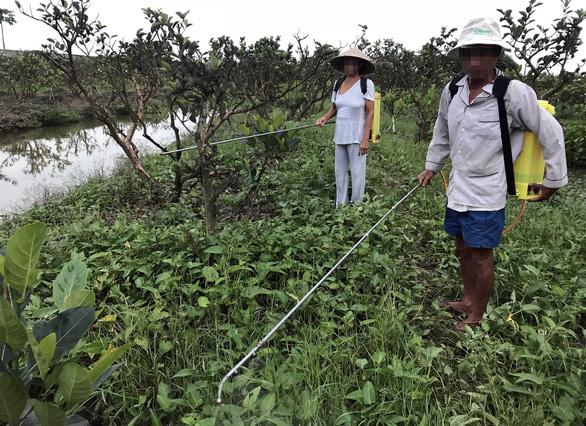 Cảnh báo hiểm họa thuốc diệt cỏ gây ung thư tại Việt Nam - Ảnh 2.
