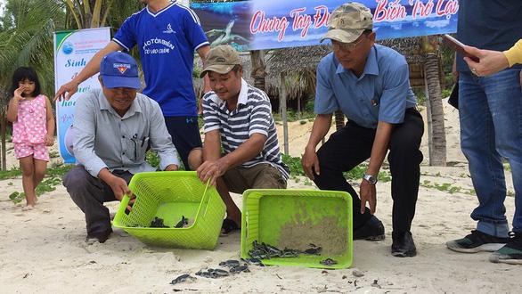 Đưa rùa về lại Cù Lao Chàm - Kỳ cuối: Giữ môi trường sống cho rùa - Ảnh 3.