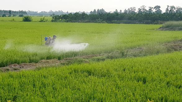 Nông nghiệp nghiện thuốc và hóa chất - Ảnh 1.