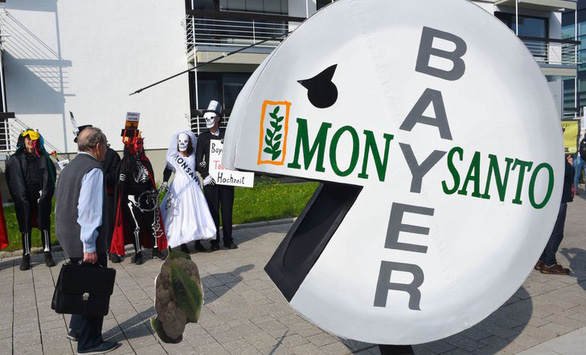 Chất diệt cỏ glyphosate gây ung thư: Monsanto muốn thoát thân? - Ảnh 3.
