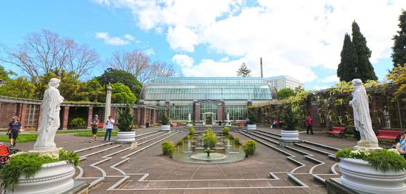 10 trải nghiệm miễn phí ở Auckland (phần 2) - Ảnh 8.
