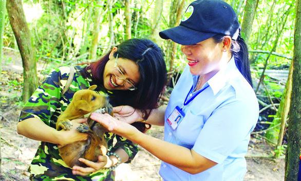 Tuấn Chó và hành trình gian nan bảo tồn chó xoáy Phú Quốc - Ảnh 3.