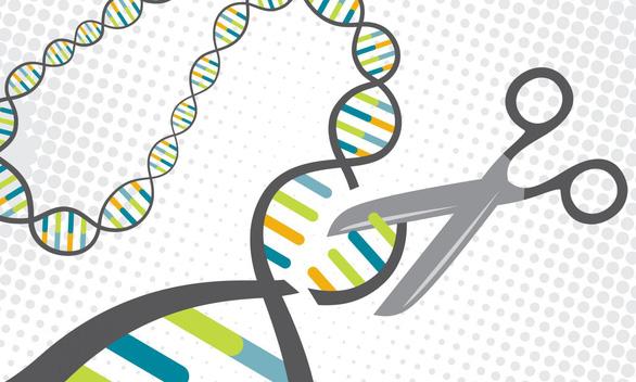 Trung Quốc đã sửa gen cho 86 người bệnh - Ảnh 1.