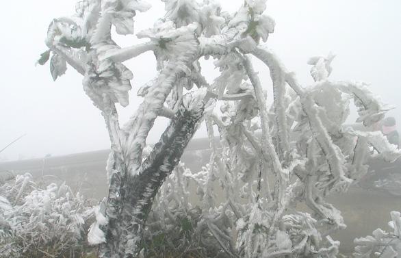 Hà Nội rét dưới 10 độ C, Mẫu Sơn băng giá phủ trắng - Ảnh 6.