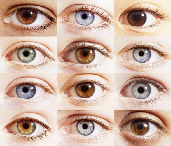 Mắt ta nhìn xa cỡ nào? - Ảnh 2.