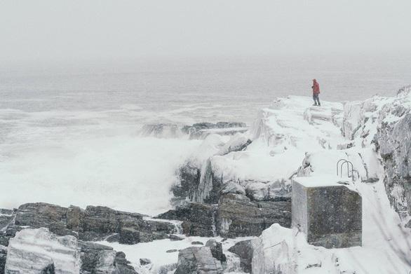 Mỹ chìm trong băng giá, động vật hoang dã lờ đờ - Ảnh 4.