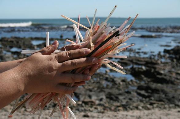 Đi du lịch nhớ gìn giữ môi trường biển - Ảnh 1.