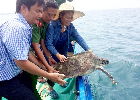 Vận động người dân giao 4 rùa biển thả về đại dương - Ảnh 3.