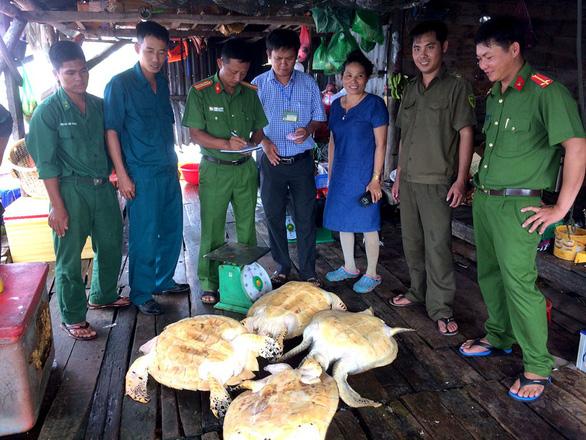 Vận động người dân giao 4 rùa biển thả về đại dương - Ảnh 2.