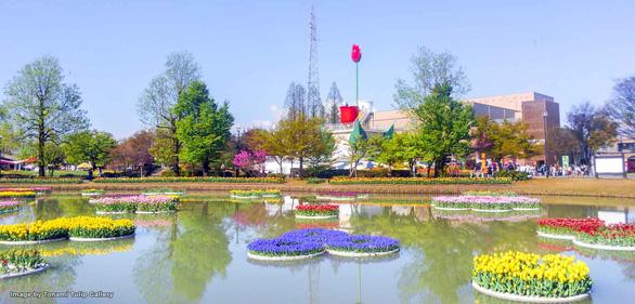 Cung điện hoa tulip rực rỡ ở Nhật Bản - Ảnh 7.