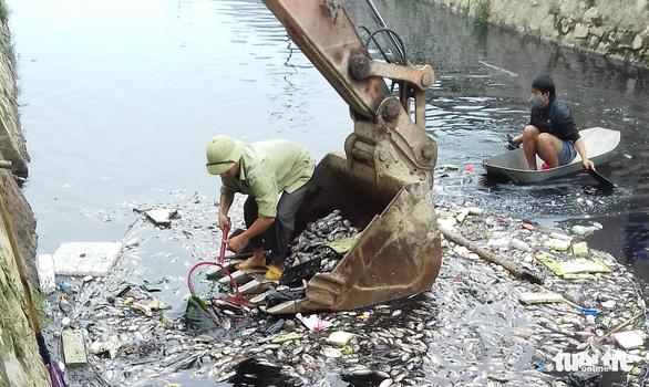 Cá chết trắng gây ô nhiễm hào thành cổ Vinh - Ảnh 2.