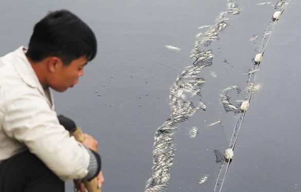 Cá chết trắng gây ô nhiễm hào thành cổ Vinh - Ảnh 7.