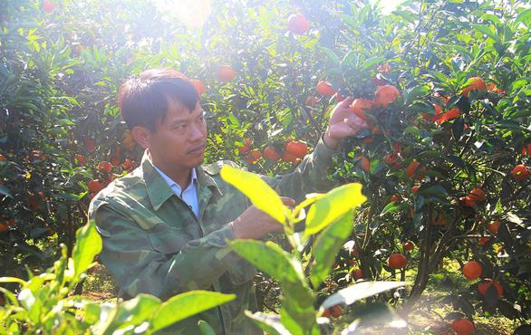 6 năm hái quả ngọt ở Nà Sản - Ảnh 1.