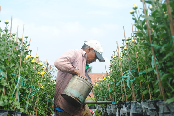 Làng hoa lớn nhất miền Tây chính thức thu phí tham quan 20.000 đồng - Ảnh 4.