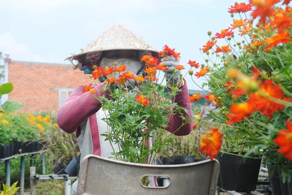 Làng hoa lớn nhất miền Tây chính thức thu phí tham quan 20.000 đồng - Ảnh 1.