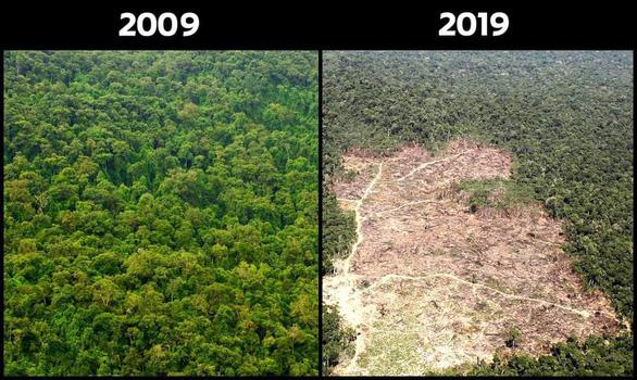 #10yearschallenge: Thiên nhiên đã mất đi thế nào trong 10 năm qua? - Ảnh 5.