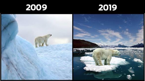 #10yearschallenge: Thiên nhiên đã mất đi thế nào trong 10 năm qua? - Ảnh 2.