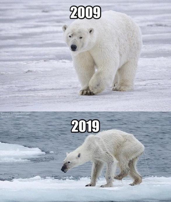 #10yearschallenge: Thiên nhiên đã mất đi thế nào trong 10 năm qua? - Ảnh 3.