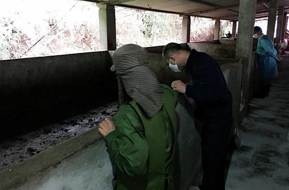 Dịch lở mồm long móng bùng phát tại Quảng Ninh - Ảnh 1.