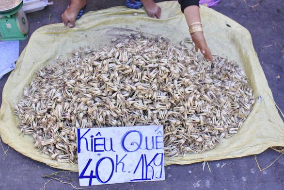 Bạn trẻ Sài Gòn rực rỡ đón xuân trên phố Ông đồ - Ảnh 5.