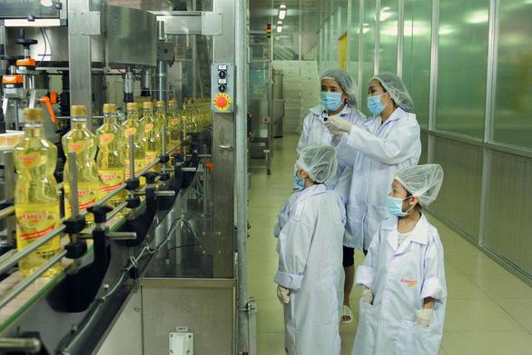 Thí sinh 'Biệt Tài Tí Hon' khám phá nhà máy tinh luyện dầu ăn từ cá - Ảnh 2.