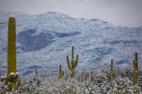 Ngắm hai thái cực của mẹ thiên nhiên: tuyết rơi sa mạc - Ảnh 10.