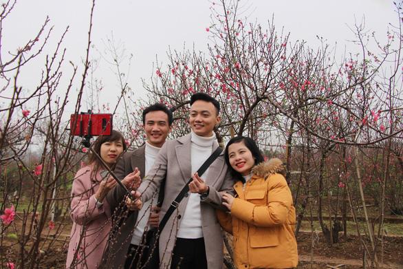 Thiếu nữ diện áo dài khoe sắc bên hoa đào đón tết Hà Nội - Ảnh 2.