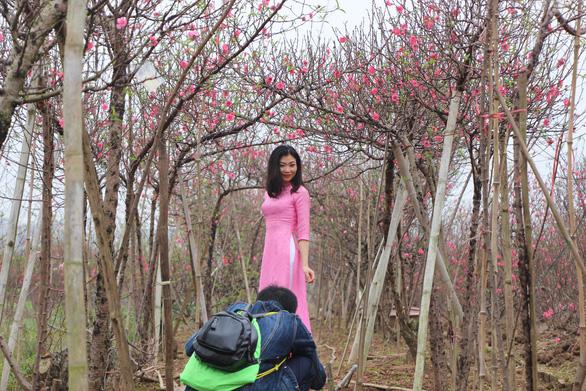 Thiếu nữ diện áo dài khoe sắc bên hoa đào đón tết Hà Nội - Ảnh 4.