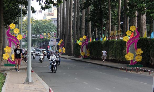 Mai cổ Vĩnh Long cao hơn 6m tại Hội hoa xuân 2019 - Ảnh 2.