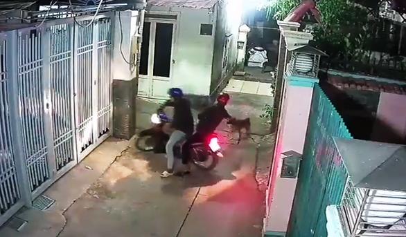 Bức xúc clip 'cẩu tặc' bắn hạ chó, định bắn luôn chủ nhà - Ảnh 2.