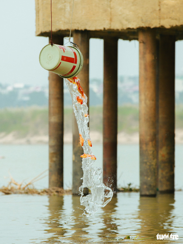 Chờ sẵn trên cầu, xin túi nilông của người thả cá chép - Ảnh 4.